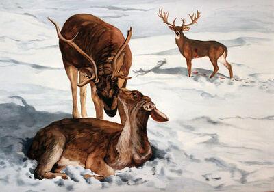 Necla Rüzgar, 'Fauna of Love', 2012