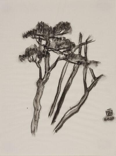 Lin Chuan-Chu, '庚子坪的樹', 2010