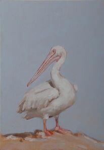 Miguel Branco, 'Untitled (Pelican)', 2015