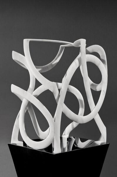 Elizabeth Turk, 'Cage: Box 14', 2012