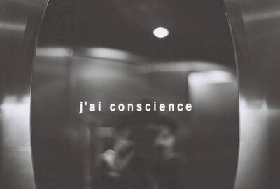 Sedef Gali, 'J'ai Conscience', 2011