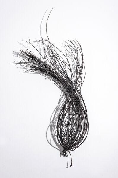 Linda Ridgway, 'Field #2', 2019