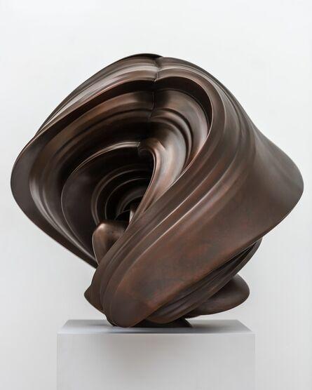 Tony Cragg, 'Willow', 2014
