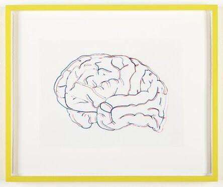 Kerim Seiler, 'Stereoscopic Brain (Neon Lights and Polar Bear)', 2014