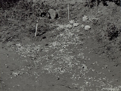 Antonio Reynoso, 'El Espirito de Los Vivos (Spirit of the Living)', 1941