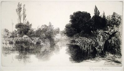 Francis Seymour Haden, 'Shere Mill Pond II (Large Plate)', 1860