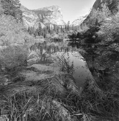 Lee Friedlander, 'Yosemite National Park, California', 2004/printed 2020