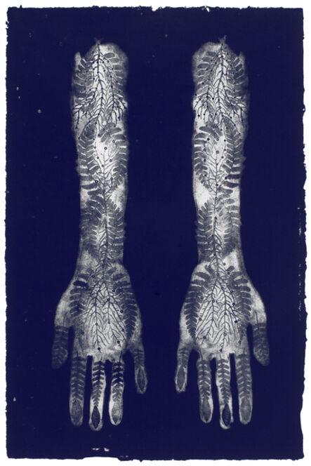Valerie Hammond, 'Trace II', 2007