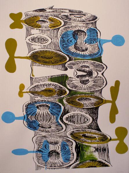 Brian Fekete, 'Cuttlefish Stretch No.4', 2009
