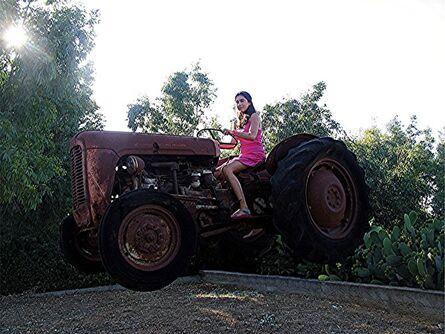 Alberto Magrin, 'The farmer', 2015
