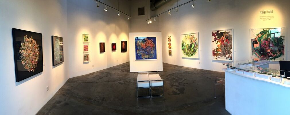 COAST TO COLOR: 2016 Group Exhibition, installation view