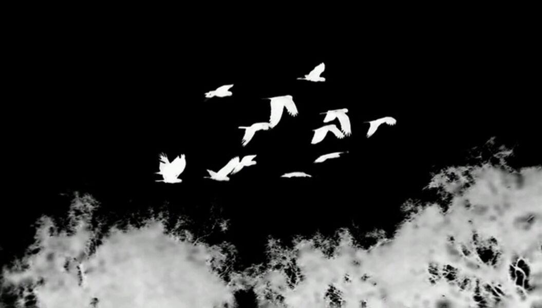 Hiraki Sawa, 'Tracking', 2010
