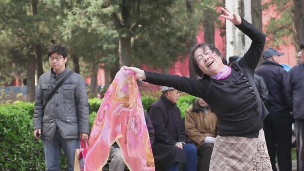 Hu Xiangqian, ' The Woman in Front of the Camera', 2015
