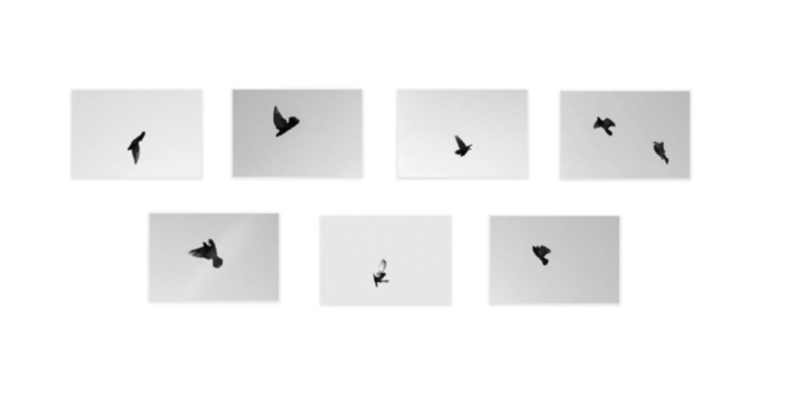 Shannon Ebner, 'Signal Escapes', 2017