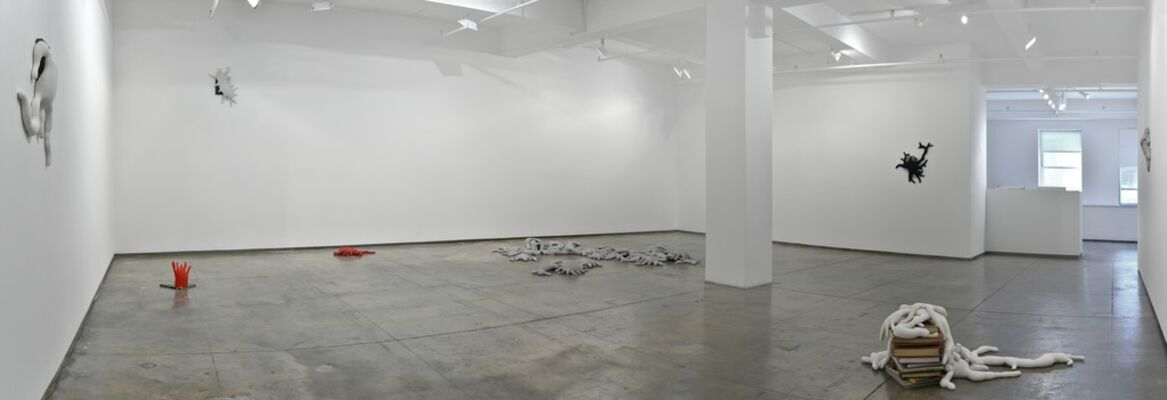 Colony, installation view
