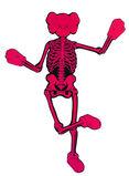 Companion Skeleton