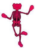 Pink Companion Skeleton