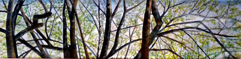 Ellen Sinel, 'Treetops in Early Spring', 2011