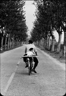 Elliott Erwitt, 'Provence, France, 1955', 1955