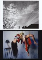 Nobuyoshi Araki, 'It was once a paradise( edition of 10)', 2011