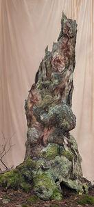 Lovisa Ringborg, 'Turning Tree', 2019
