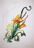 Salvador Dalí, 'Elephant Lily ', 1972