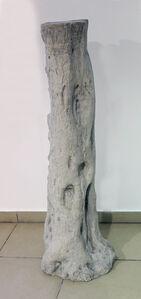 Khaled Jarrar, 'Olive Tree', 2013