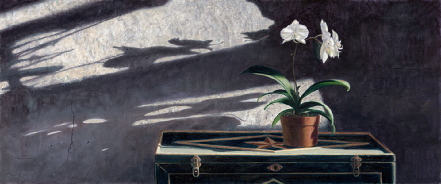 Timothy Barr, 'Orchids', 2018