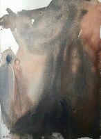 Salvador Dalí, 'Behold The Virgin Shall Conceive, 'Ecce Virgo Concipiet', Biblia Sacra', 1967