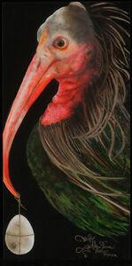 Adrienne Sherman, 'Northern Bald Ibis (Geronticus eremita)', 2020