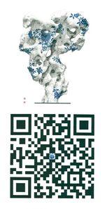 Chen Chien-Fa 陳建發, 'Blue Pattern Code  青花符碼年 ', 2015