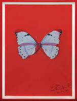 Damien Hirst, 'Untitled (Red Butterfly).', ca. 2005