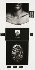 Lorna Simpson, 'Counting', 1991