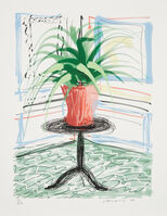 David Hockney, 'A Bigger Book, Art Edition C'