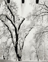 Ansel Adams, 'Icicles, Ahwahnee Hotel, Yosemite National Park, California', ca. 1934