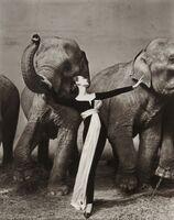 Richard Avedon, 'Dovima with Elephants, Paris', 1955
