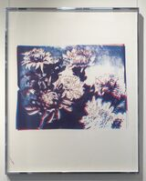 Andy Warhol, 'Kiku (unique Trial Proof, authenticated)', 1983