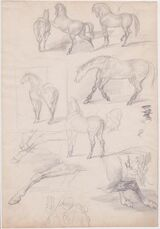 Studies of Horses and Riders