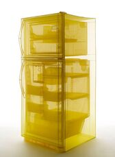 Specimen Series: Refrigerator, Unit 2, 348 West 22nd Street, New York, NY 10011, USA
