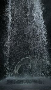 Bill Viola, 'Tristan's Ascension (The Sound of a Mountain Under a Waterfall)', 2005