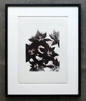 Andy Warhol, 'Poinsettias (F&S IIIA.51) UNIQUE)', 1983