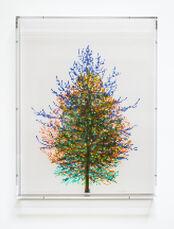 Numbers and Trees, Tiergarten Series 3: Tree #6, September, 2018