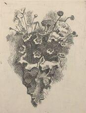 Cornetto con Fiori di Campo (Bouquet of Wild Flowers)