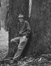 Wynn Bullock, Photographer 2, 1966