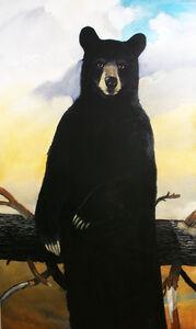 Robert McCauley, 'The Great North American Black Bear Census Project II', 2019