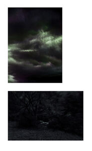 Albano Afonso, 'Constellations II and Paradises II. Diptych.', 2020