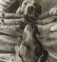 William Wegman, 'Dog Cabin (From Man Ray:  A Portfolio of 10 Photographs)', 1982