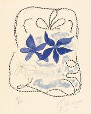 Les deux iris bleus