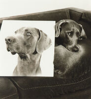 William Wegman, 'Double Portrait (From Many Ray:  A Portfolio of 10 Photographs)', 1982