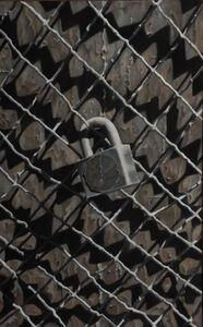 Scott Geyer, 'Lock and Fence', 2004